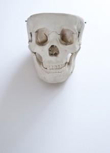 Jharrison_skull01